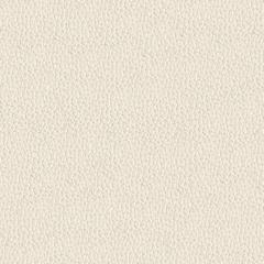 Искусственная кожа Alpha (Альфа) 2303-02