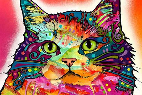 Алмазная Мозаика 20x30 Разноцветный кот