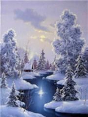 Картина раскраска по номерам 40x50 Зимний вид