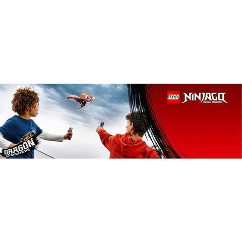 LEGO Ninjago: Коул - Мастер дракона 70645 — Cole - Dragon Master — Лего Ниндзяго