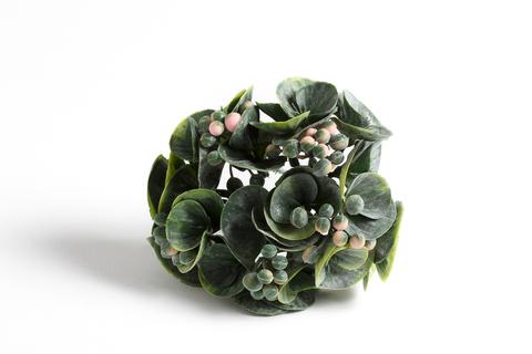Куст с круглым листом и ягодами.