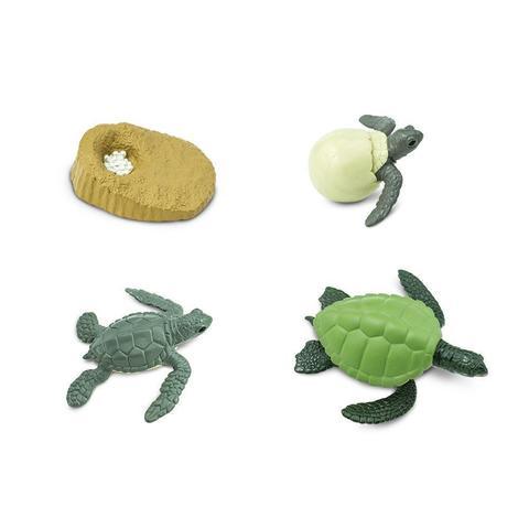 Жизненный цикл морской черепахи, Safari Ltd, состав развивающей игры