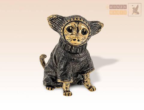 фигурка Собака Чихуахуа в костюме