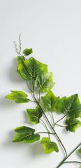 Листья винограда искусственные на ветке, 65-75 см.