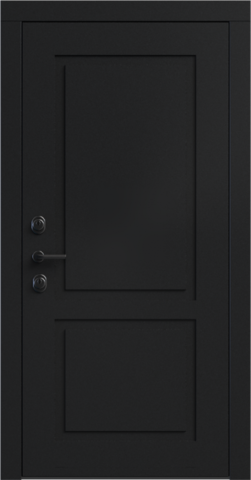 Входная дверь «NEO Classic 2» в цвете, Эмаль черная