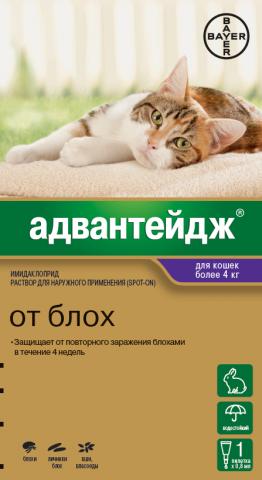 Адвантейдж для кошек весом свыше 4кг (1 пипетка)