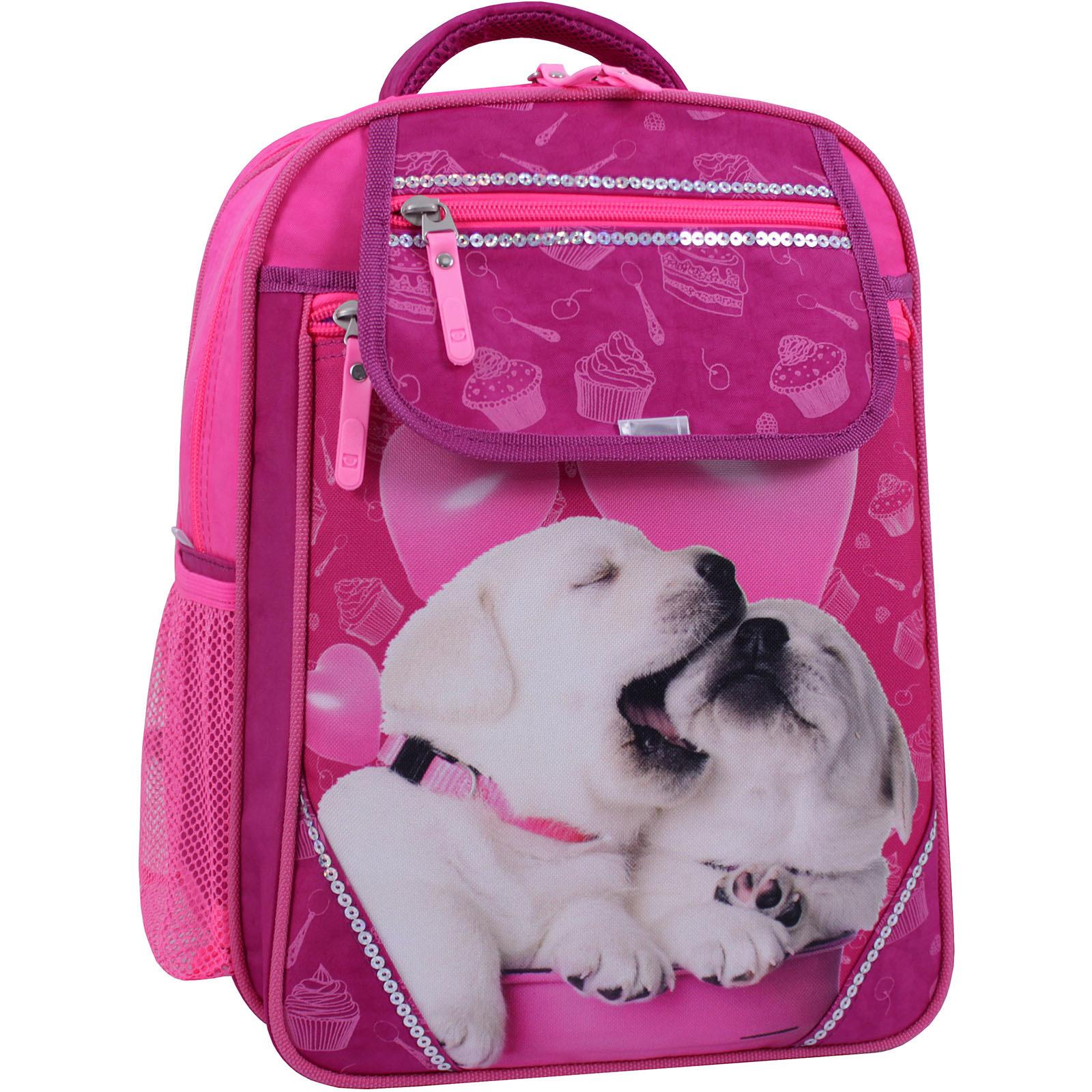 Детские рюкзаки Рюкзак школьный Bagland Отличник 20 л. Малиновый 593 (0058070) IMG_1260_суб.593_.JPG