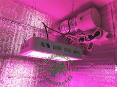 В120хД80хШ60 ГроуБокс 150W LED