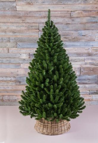 Напольные елки 120 см