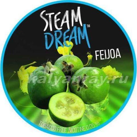 Steam Dream - Фейхоа