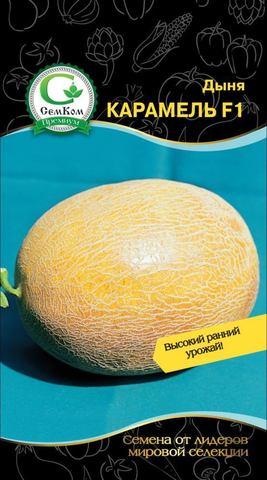 Семена Дыня Карамель F1 (Clause)  5 сем