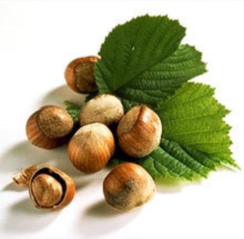 Лесного ореха (фундука) масло (нерафинированное)