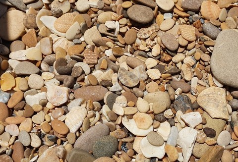 Камень Ракушечник (галька каспийская)