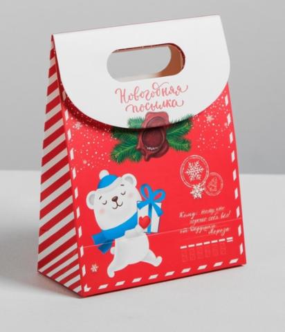 060-9791 Пакет подарочный «Красный с мишкой», 18*23*10 см