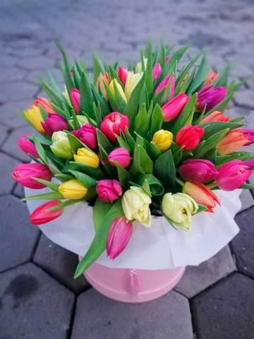 Композиция в коробке из 49 ярких тюльпанов