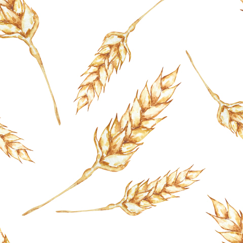 Пшеничные колоски