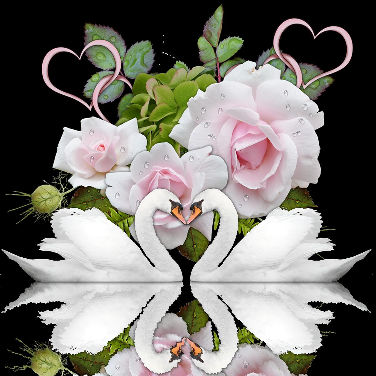 открытки с цветами на день свадьбы дикие