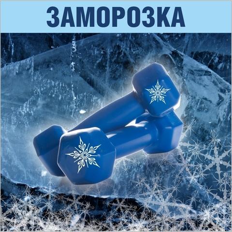https://static-ru.insales.ru/images/products/1/8079/114302863/site_orange_zamorozka2.jpg