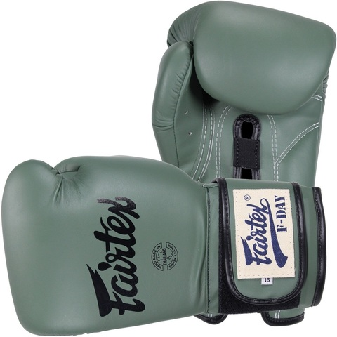 Перчатки для бокса Fairtex Boxing gloves F-Day BGV11