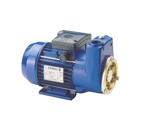 """Электрический топливный насос 1"""" BSP / PUMP LOWARA SP5 1-PH 230V АРТ: 596-617 (FK4)"""