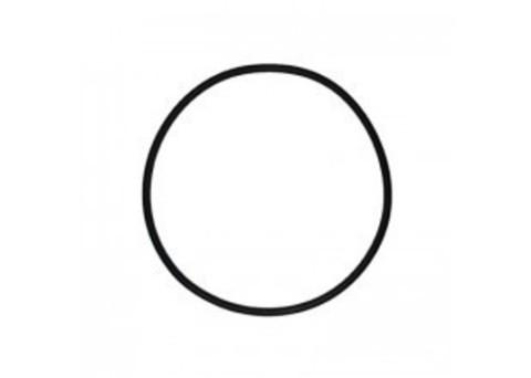 Кольцо уплотнительное для 1П Гейзер, (прозрачный корпус), арт.23239
