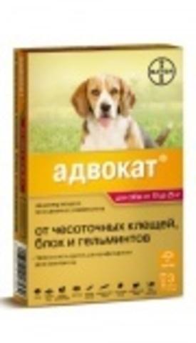Advocate для собак весом 10-25 кг, 1пип.