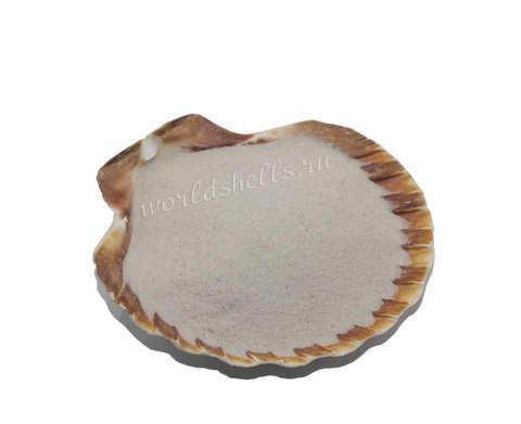 Песок натуральный белый мелкий 300 гр.