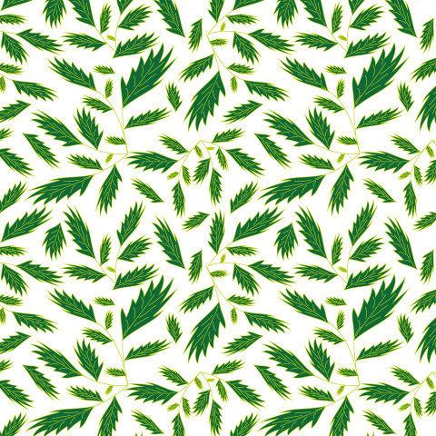 Листья на белом фоне