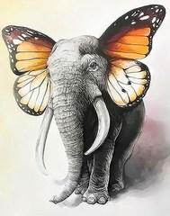Картина раскраска по номерам 40x50 Слон-бабочка