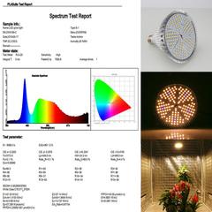 Фитолампа E27 100 Ватт (полный спектр)