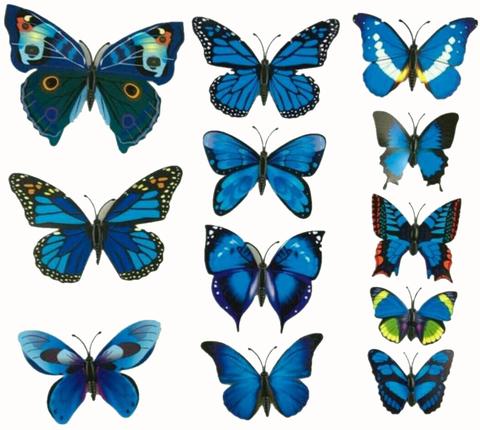 Печать на вафельной бумаге, Набор Бабочки 3