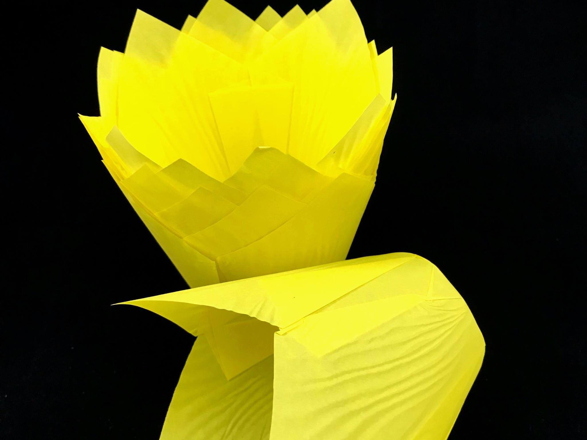 Форма бумажная