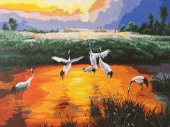 Картина раскраска по номерам 40x50 Птицы в мелком пруду