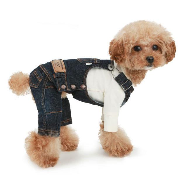 джинсовый комбинезон для пуделя