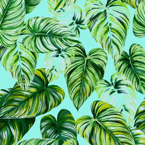 тропические листья_06