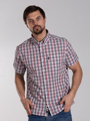 Рубашка к/р муж.  M012-03B-01CR BOSTON