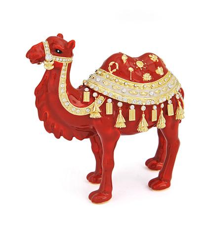 Двугорбый верблюд для счастья
