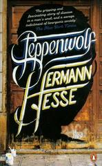 Steppenwolf (Paperback)