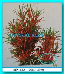 Растение Атман AS-113A, 30см