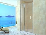 Душевая дверь RGW LE-04 100х195 06120400-11 прозрачное