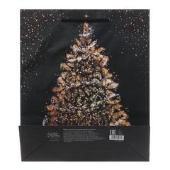 Пакет ламинированный вертикальный «Исполнения желаний», ML 23 × 27 × 8 см