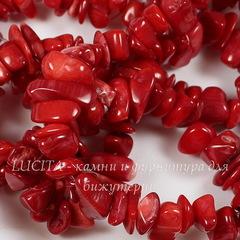 Бусина Морской бамбук (имитация Коралла), крошка, цвет - красный, 5-15 мм