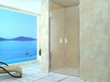 Душевая дверь RGW LE-06 120х195 06120612-11 прозрачное