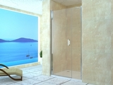 Душевая дверь RGW LE-08 (LE-03+Z-09) 100х195 06120800-11 прозрачное