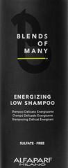 Шампунь для объема тонких и редеющих волос ENERGIZING LOW SHAMPOO, пробник 10 мл