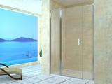 Душевая дверь RGW LE-09 (LE-04+Z-09) 130х195 06120913-11 прозрачное