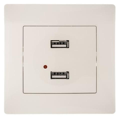 Розетка зарядка USB с рамкой. Цвет Бежевый. Bravo GUSI Electric. С10USB2-003-СБ