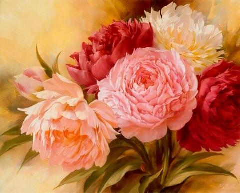 Картина раскраска по номерам 30x40 Розовые пионы вблизи