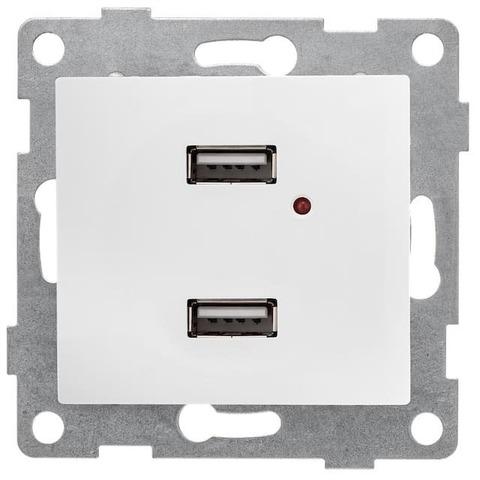 Розетка зарядка USB. Цвет Белый. Bravo GUSI Electric. С10USB2-001